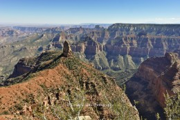 Grand Canyon: View from North Rim