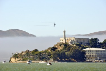 Raptor flying over Alcatraz