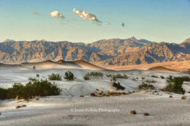 Death Valley: Mesquite Sand Dunes