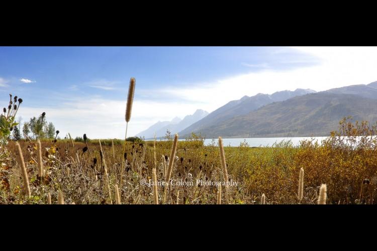 Grand Teton: Jackson Lake