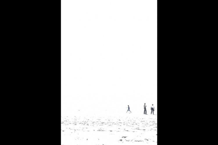Santa Monica Beach Walkers