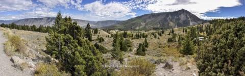 North Yellowstone viewpoint